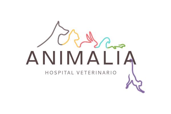 upwide-portafolio-logos-animalia
